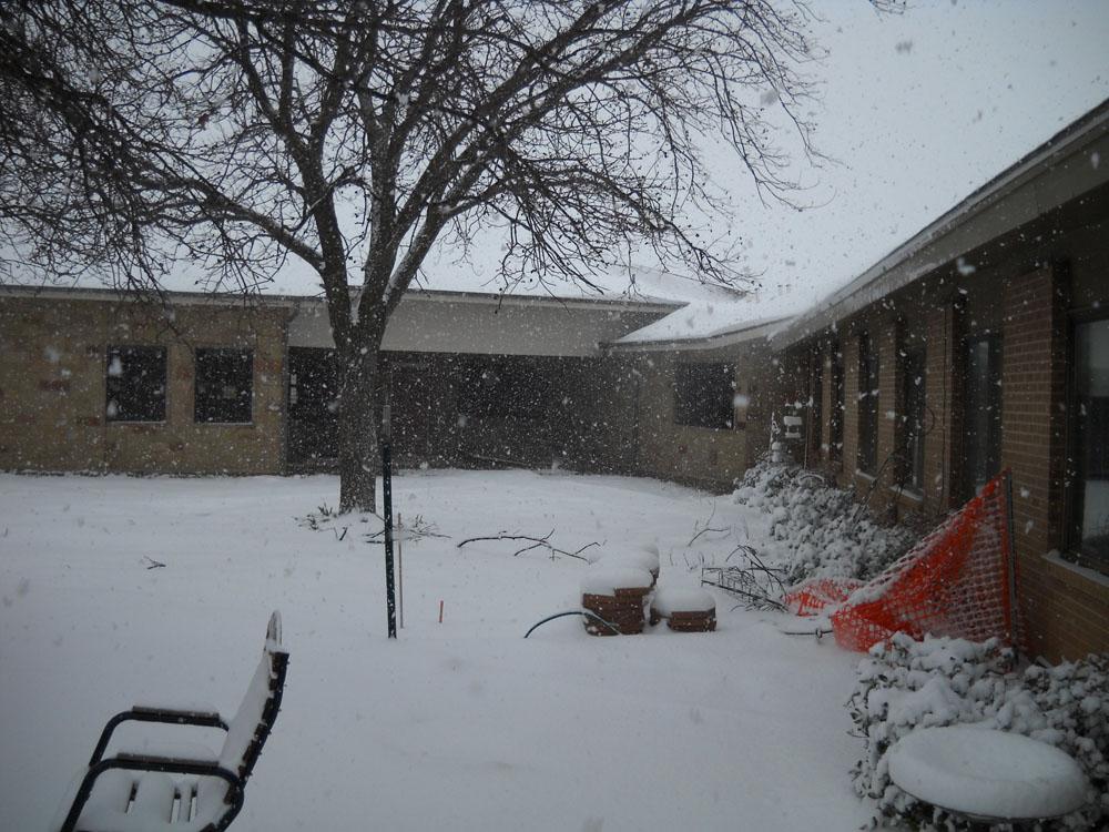 snowball-7